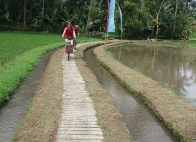 bali_bike_tours3